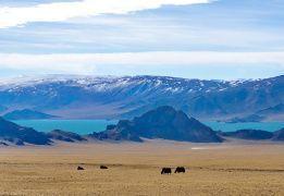 Восхождение на высшую точку Монголии – гору Найрамдал (4374 м). Разведка