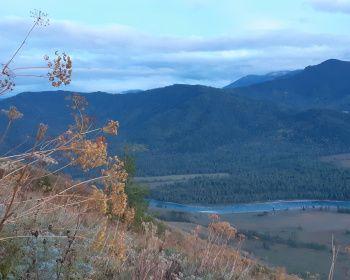 Алтай на байдарках: сплав по рекам Кокса и Катунь