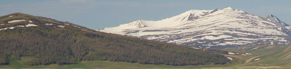 Туры по Монголии