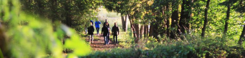 Экологический | Карельский перешеек >> все маршруты